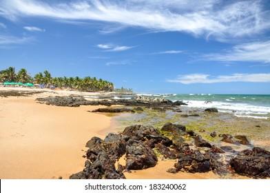 Beach of Praia do Forte with colored beach umbrellas, Salvador de Bahia (Brazil)