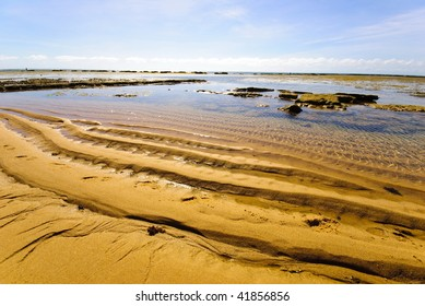 Beach in Praia do Forte, northeast of Brazil .