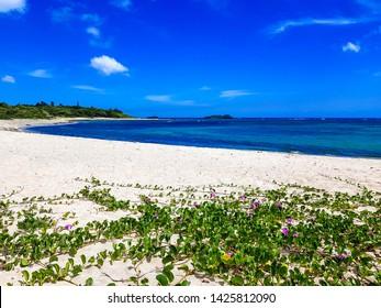 The beach of Puerto Plata