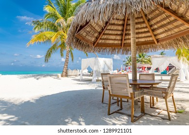 Beach restaurant on tropical island, sunny weather, beach landscape with chairs and table and parasol, outdoors bar and lounge area. Beach canopy, exotic relaxing mood. Summer vacation and holiday