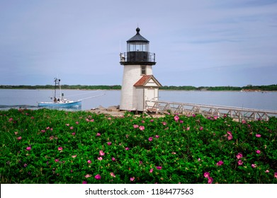 Beach roses near Nantucket Island lighthouse, Brant Point Light, as it guides a fishing boat into the harbor.