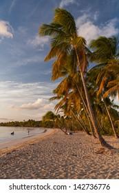 Beach of Saint anne, Martinique