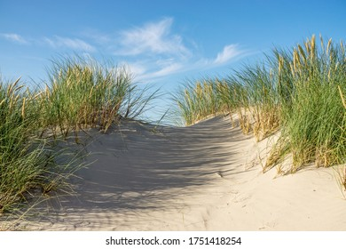 Beach with sand dunes and marram grass with blue sky and clouds. Skagen Nordstrand, Denmark. Skagerrak, Kattegat.
