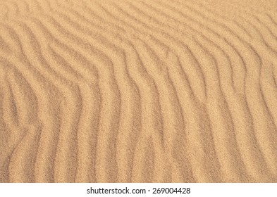 beach sand dunes near the sea. Ideal for golden sand backgrounds and textures