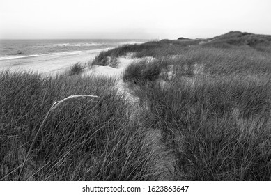 Beach with sand and grass in Denmark