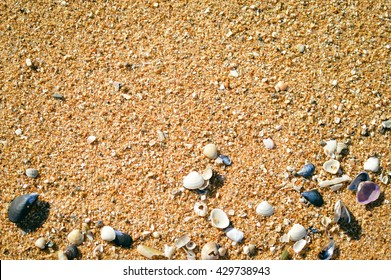 Sable Texture Hd Stock Images Shutterstock