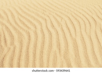 beach and sand texture. pattern of sand