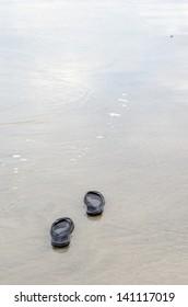 Beach sandals on the sandy beach