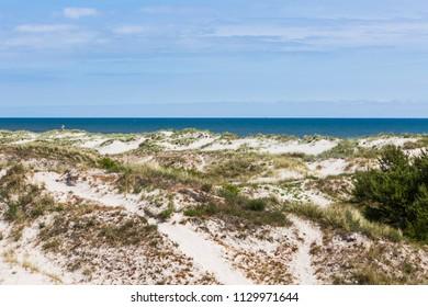 The beach of Sandhammaren, Skane Sweden a summer morning in June