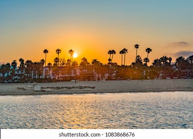 beach of Santa Barbara with palm trees in sunset