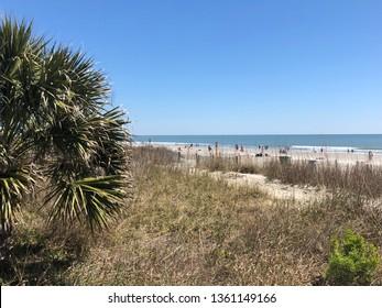 Beach scene with Atlantic Ocean in background.