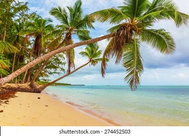 Beach, scene, sunlight.