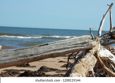 Beach Scenery at Brackley Beach in the National Park of Prince Edward Island in Canda with timber