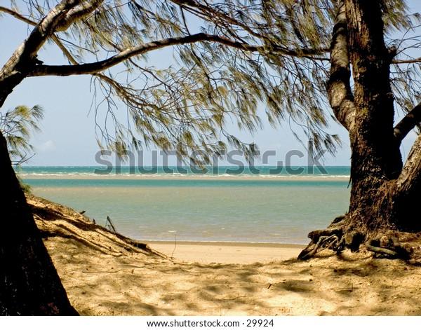 Beach to Sea