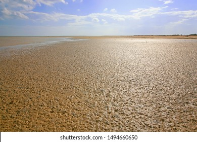 Beach and sea at low tide in Kerkennah islands (the only place in Mediterranean sea with tides), Tunisia, North Africa