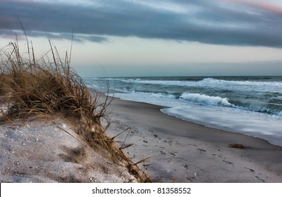 Beach and sea oats