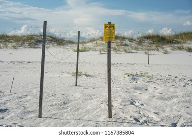 Beach sea turtle nest with sign warning beachgoers to keep out and do not disturb. Footprints shown around the string and stakes enclosure.