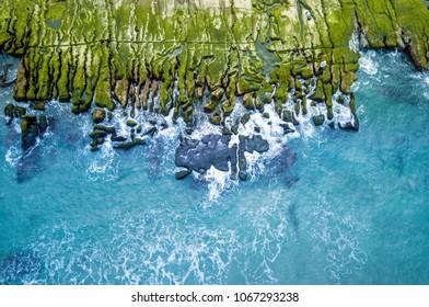Beach Seaweed on the shore rocks, Northeast coast of Taiwan