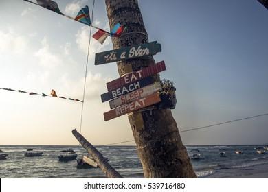 beach sign on the palm