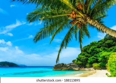 Beach of Similan Islands at Phang Nga in Thailand