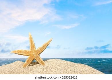 Beach, starfish, caribbean.
