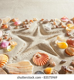 beach with starfish printed in white sand many clam shells as a summer vacation background