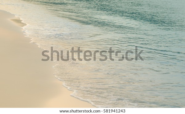 Beach in Summer