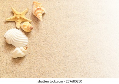 Beach summer. Seashells and sand.
