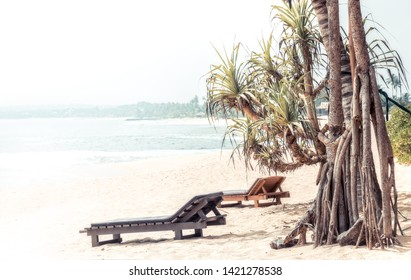 Beach summer vacation holidays landscape with palm trees surf sea sun lounger as travel tropical lifestyle