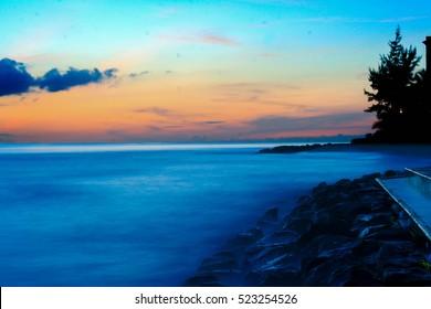 Beach sunset, pine trees, foggy sea, wet rocks,