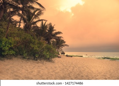 Beach sunset travel vacation lifestyle landscape with palm trees wide sand coastline waves with scenic orange sunset sky in Sri Lanka Tangalle beach