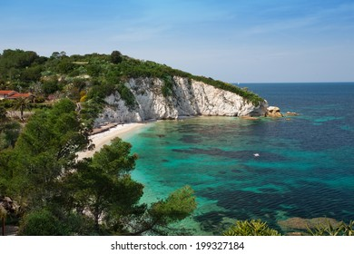 beach surrounded by nature and crystal clear sea in Elba Island
