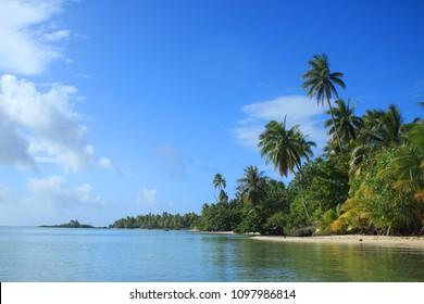 Beach in Tahiti Tropical paradise