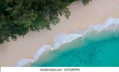 Beach top view. Aerial view of tropical Island white sand beach alonf the pine tree anf turqouise water at Koh Kradan Island, Trang, Thailand