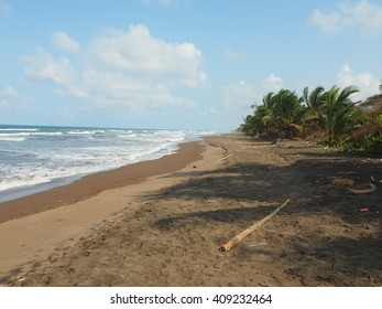 Beach in Tortuguero, Costa Rica
