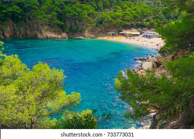 A beach with transparent water.