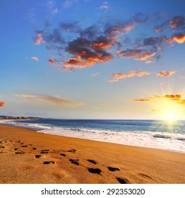 Beach travel -  footprints on the sand at sunset. business background