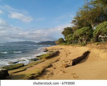 beach, tropical scene,