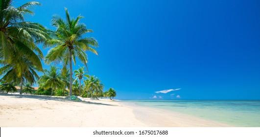 beach and tropical sea .
