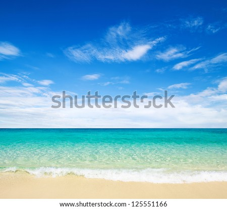 beach tropical sea の写真素材 今すぐ編集 125551166 shutterstock