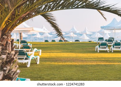 Beach in Turkey with green grass in foreground, white sun shade umbrellas and blue sea in background