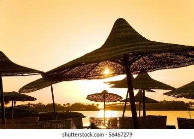 Beach Umbrellas under Golden Rain