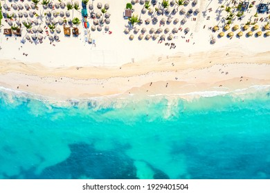 Beach vacation and travel background. Aerial drone view of beautiful atlantic tropical beach with straw umbrellas and palms. Bavaro beach, Punta Cana, Dominican Republic