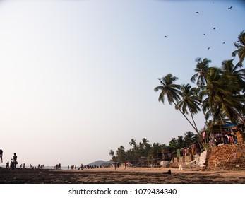 Beach Vibes At Goa, India