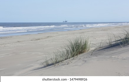 Beach view from the sand dunes (dyke) at Dutch north sea coast with european marram grass (beach grass) under blue clear sky in summer, Netherlands.