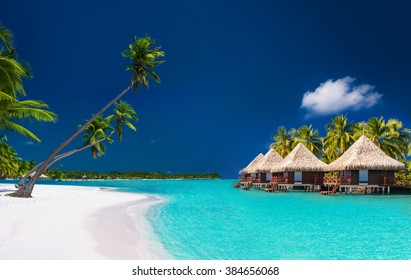 Beach villas on a tropical island with palm trees and white sandy beach