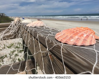 Beach wedding shell decor