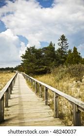 Beach Wooden Path