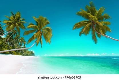 beach-5120x3200 tropical sunny beautiful
