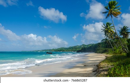 The beaches of Samana, Dominican Republic